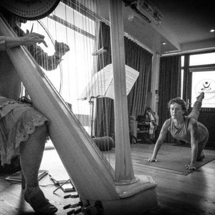Harp-4-sq